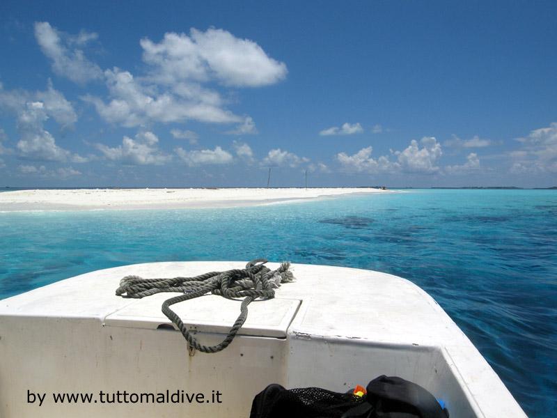 Crociera maldive sharifa boat isole maldive fotografie - Bagno coi delfini ...